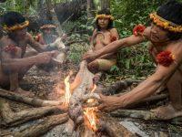 Anggota suku Awa menyiapkan makanan mereka. (Charlie Hamilton James)