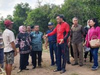 Gubernur Sulawesi Selatan, Nurdin Abdullah, meninjau lahan untuk kebun percontohan di Soppeng, Sabtu (23/3).