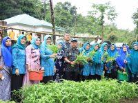 Hasnah Syam Panen Sayur-Mayur Bersama KWT di Mattapawalie