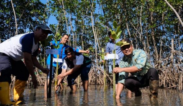 Wagub Sulsel, Andi Sudirman Sulaiman turut menanam Bakau 2019