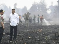 Presiden Joko Widodo (kanan) didampingi Kapolri Jenderal Pol Tito Karnavian meninjau penanganan karhutla di Riau, Selasa (17/9. Foto: ANT/Puspa Perwitasari
