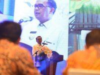 Gubernur Sulawesi Selatan, Nudin Abdullah. (Ist)