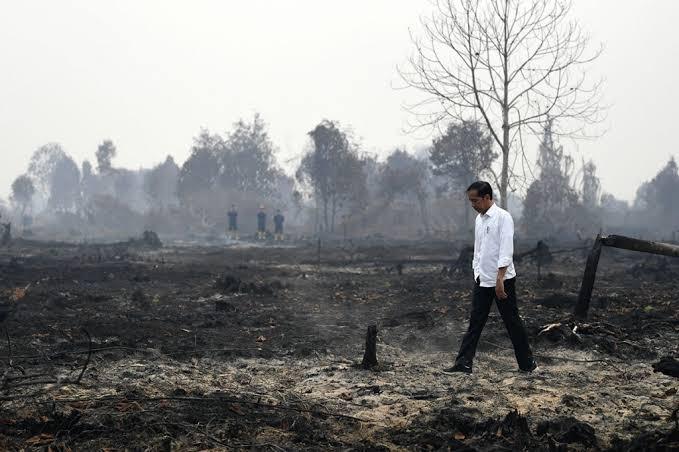 Presiden Joko Widodo meninjau penanganan kebakaran lahan di Desa Merbau, Kecamatan Bunut, Pelalawan, Riau, Selasa, 17 September 2019