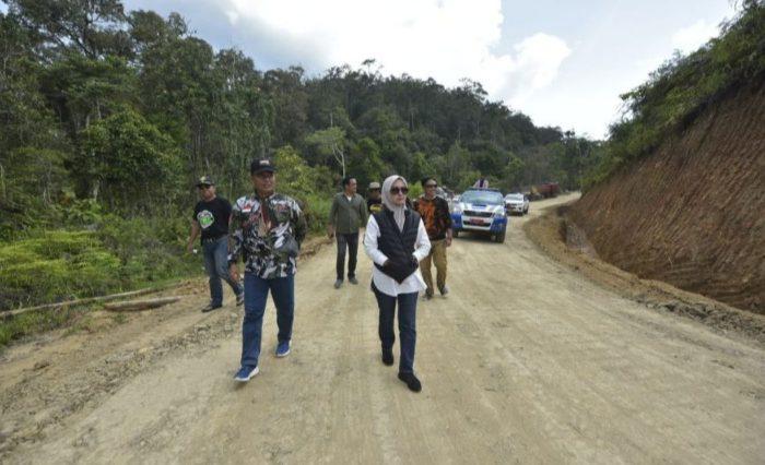 Bupati Luwu Utara, Indah Putri Indriani, saat meninjau jalan di Seko
