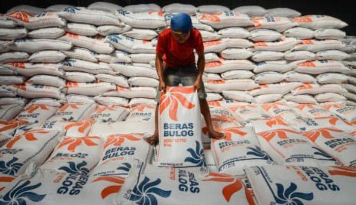 Bongkar muat beras di Gudang Bulog. Foto: ANTARA/Raisan Al Farisi