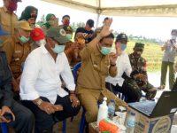 Lewat Video Conference, Bupati Barru Panen Raya Bareng Menteri Pertanian