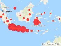 Peta Sebaran Kasus Virus Positif Corona di Indonesia