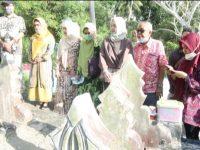 Jelang Idul Adha, Putri Wapres Pulang Kampung ke Selayar Bersama Suami