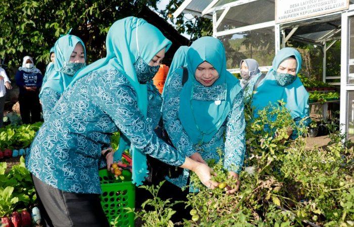 Musrifah Basli Silaturahmi dengan Kelompok Wanita Tani Bontosikuyu