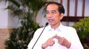 Presiden Jokowi (Biro Pers Sekretariat Presiden)