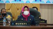 Pelaksana Harian (Plh) Bupati Bulukumba, Misbawati A Wawo.